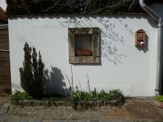 tavasz9