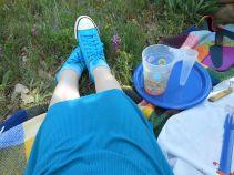 piknik9